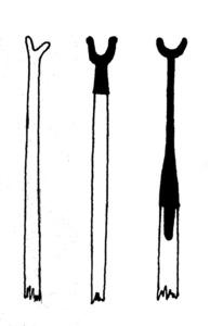 """Diversos tipus de forcalls. Dibuix: Vicent Marí Serra """"Palermet""""."""