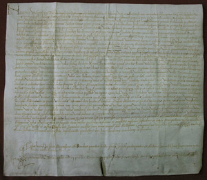 Germanies. Pergamí del 2 de juny de 1522 pel qual es ven una embarcació de Joan Escribà i altres, a la dona de Miquel Gurrea per 231 lliures de monedes de Mallorca; aquesta nau havia estat presa als agermanats de Mallorca. Cortesia de l´Arxiu Històric Municipal d´Eivissa.