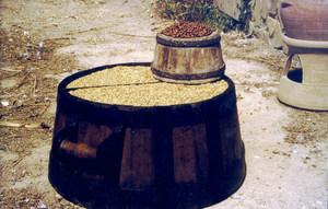 Mesures per a àrids: una mitja quartera rasa i un almud caramull. Foto: Felip Cirer Costa.