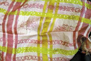 Detall d´un altre mocador de seda de la mateixa tipologia. Foto: Lena Mateu Prats.