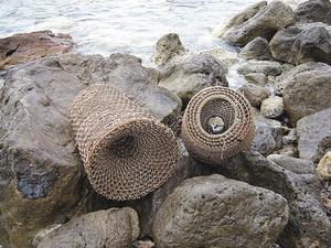 El morenell és un ormeig de pesca per a morenes, anguiles i congres.