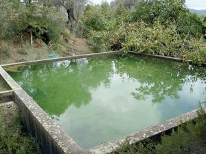 Un safareig, dipòsit descobert per emmagatzemar-hi aigua. Foto: EEiF.