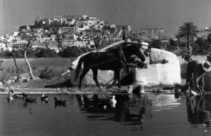 Antiga sénia al pla de Vila. Foto: Domingo Viñets.